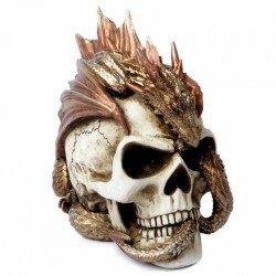 The Vault Dragon Keeper's Skull
